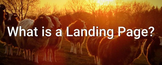 landing-page-increase-traffic-website